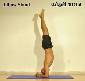 Elbow.stand